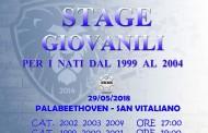 B-Energy Lausdomini, martedì 29 maggio (ore 17) gli stage alla palestra Beethoven per i nuovi leoncini