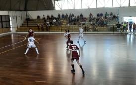 """Alma Salerno, derby di Coppa Divisione alla Feldi. Cocchia: """"Troppa differenza, ma buone indicazioni. Continuiamo il nostro percorso di crescita"""""""
