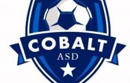 Nasce il Cobalt, parteciperà alla D